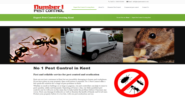 Pest control Kent